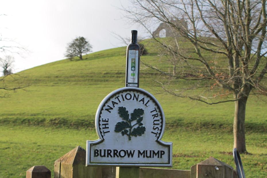 Burrow Mump